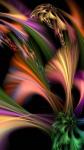 53453_Colors-82893527-7770-3908-89ee-6bfe096d9672.jpg